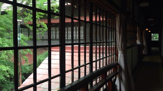 海陽亭 素適な硝子窓